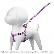 Correa para perro con pechera, 1.5 cm ancho