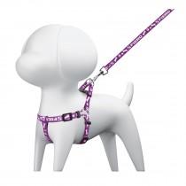 Correa para perro con pechera, 1 cm ancho